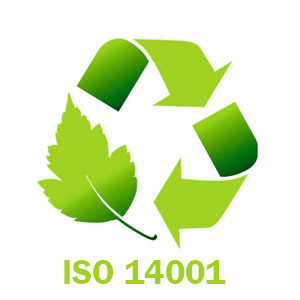 auditor iso 14001