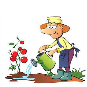 Operatore alla realizzazione-e-alla-manutenzione di giardini